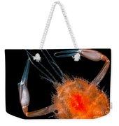 Larval Blind Lobster Weekender Tote Bag