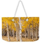 Last Of The Aspen Leaves Weekender Tote Bag