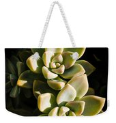 Late Afternoon 2 Weekender Tote Bag