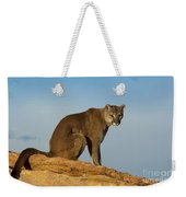 Late Afternoon Foray Weekender Tote Bag