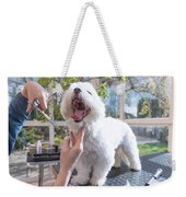 Laughing Adorable White Dog Is Groomed Weekender Tote Bag