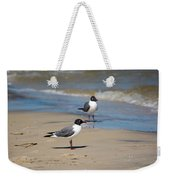 Laughing Gulls On The Beach Weekender Tote Bag