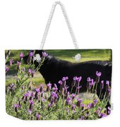 Lavender And Black Lab Weekender Tote Bag
