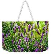 Lavender At Pilgrim Place In Claremont-california Weekender Tote Bag