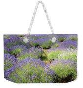 Lavender Field, Tihany, Hungary Weekender Tote Bag