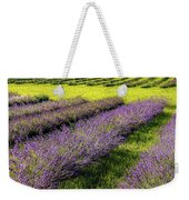 Lavender Fields Forever Weekender Tote Bag by Kendall McKernon