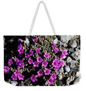 Lavender In The Rocks Weekender Tote Bag