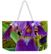 Lavender Iris At Pilgrim Place In Claremont-california  Weekender Tote Bag