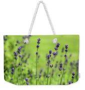 Lavender Spikes  Weekender Tote Bag