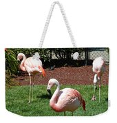 Lawn Ornaments Weekender Tote Bag