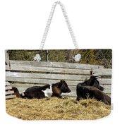 Lazy Cows And Weathered Wood Weekender Tote Bag