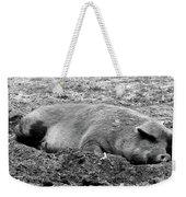 Lazy Hog Weekender Tote Bag