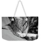 Lea Sleepy Cat Weekender Tote Bag