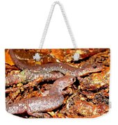 Leadback Salamander Pair Weekender Tote Bag