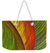 Leaf Abstract 3 Weekender Tote Bag