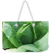 Leaf Lettuce Part 3 Weekender Tote Bag