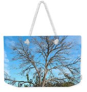 Leafless In Autumn Weekender Tote Bag