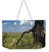 Leaping Lion Weekender Tote Bag