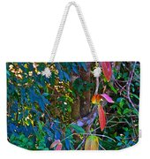 Leaves Changing Color As Autumn Approaches In Iguazu Falls National Park-argentina   Weekender Tote Bag