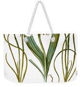 Leek And Irises, 1613 Weekender Tote Bag