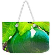 Lemon Or Lime Weekender Tote Bag