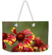 Lemon Yellow And Candy Apple Red Coneflower Weekender Tote Bag