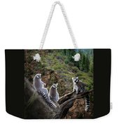 Lemur Family Weekender Tote Bag