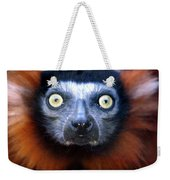 Lemur Glare Weekender Tote Bag