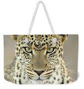 Leopard Panthera Pardus Female Weekender Tote Bag