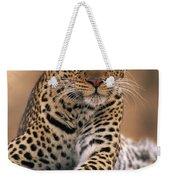 Leopard Panthera Pardus, Masai Mara Weekender Tote Bag by Anup Shah