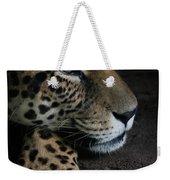 Leopard Print Weekender Tote Bag