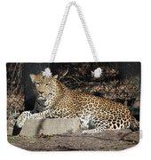 Leopard Relaxing Weekender Tote Bag