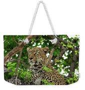 Leopard With Piercing Eyes Weekender Tote Bag