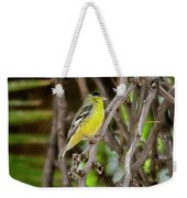 Lesser Goldfinch H57 Weekender Tote Bag
