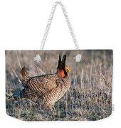 Lesser Prairie Chicken Displaying Weekender Tote Bag