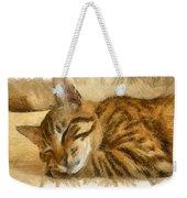 Let Sleeping Cats Lie Weekender Tote Bag