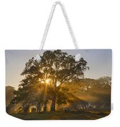 Let There Be Light Weekender Tote Bag