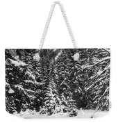 Leutasch Snow Trail 2 Weekender Tote Bag