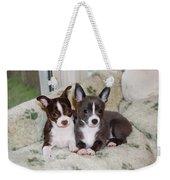 Lexi And Gracie Weekender Tote Bag