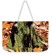 Lichen Castle In Autumn Leaves Weekender Tote Bag
