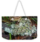 Lichen On Dead Branch Outer Banks North Carolina Usa Weekender Tote Bag