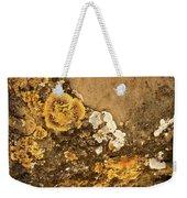 Lichen On The Piran Walls Weekender Tote Bag