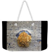Lichen On The Trees 1 Weekender Tote Bag