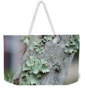 Lichens 2 Weekender Tote Bag