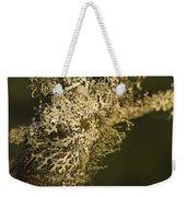 Lichens In Oregon Weekender Tote Bag