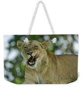 Licking Lion Weekender Tote Bag