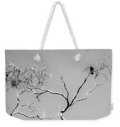 Life And Death Weekender Tote Bag by Jason Roberts