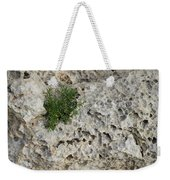 Life On Bare Rock - Pockmarked Limestone And Thyme Weekender Tote Bag