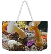 Life Under The Sea In Monterey Aquarium-california Weekender Tote Bag