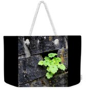 Life Will Find A Way Weekender Tote Bag
